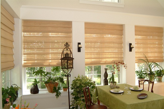 Blackout Cordless Roman Shades