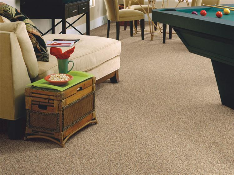 Carpet Ideas Stainmaster Separate Ways Plus