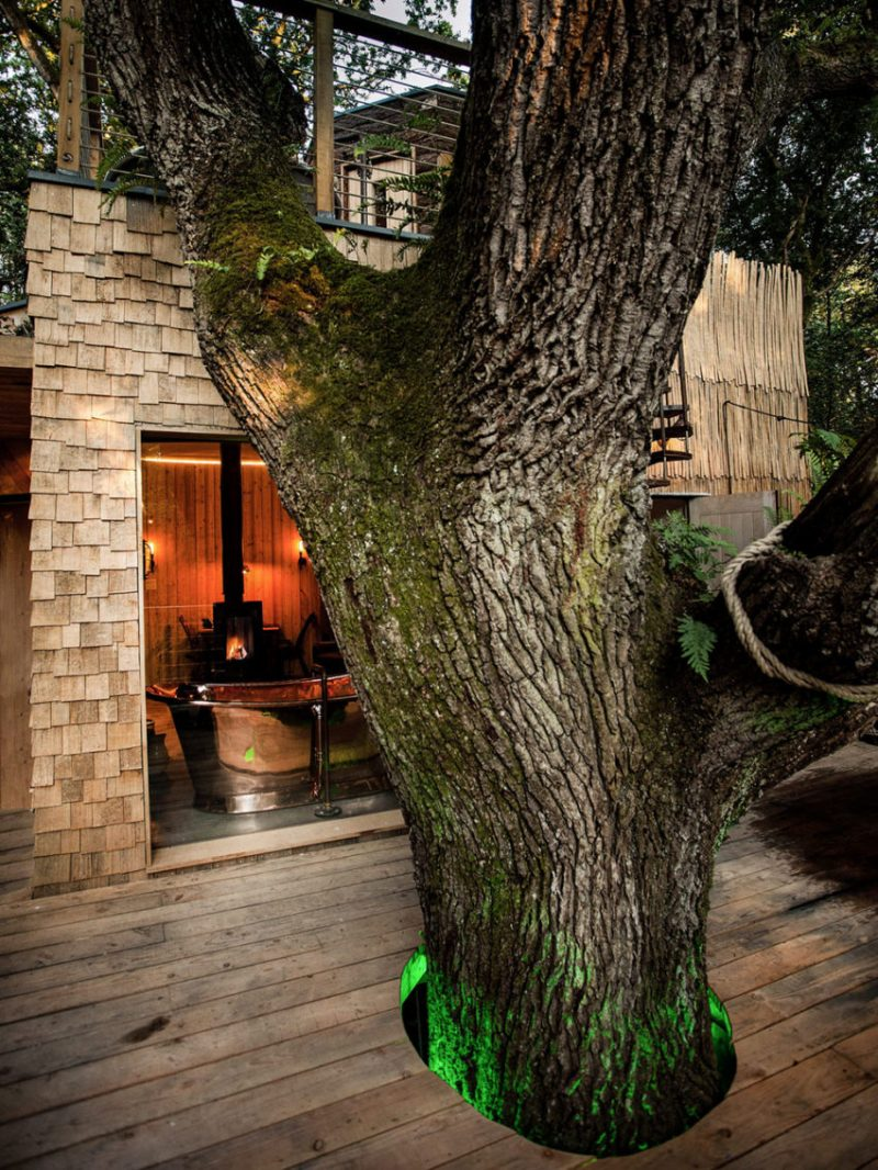 12 Tree House Homes