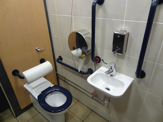 Grab Bars for Bathrooms Placement