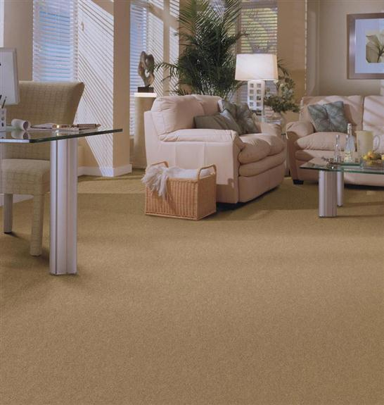 Carpet Ideas Floorcraft Senta