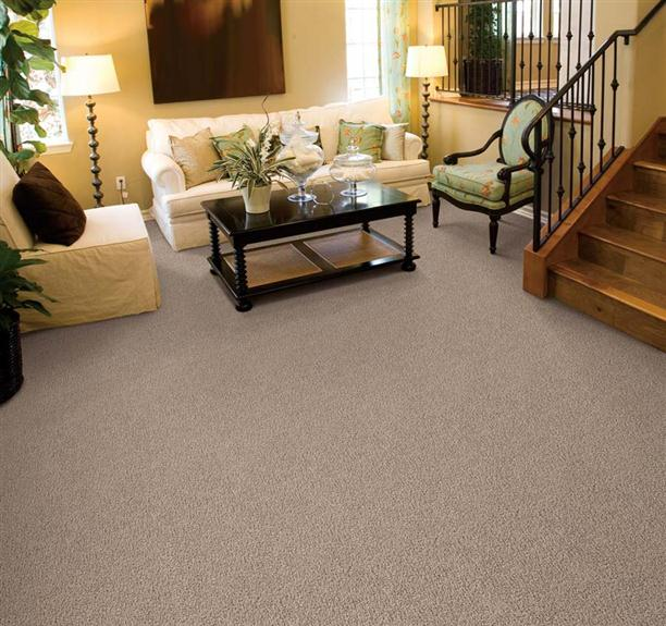Carpet Ideas Inner Drive Premier